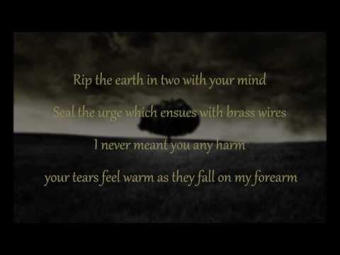 mumford-sons-i-gave-you-all-lyrics-xxtrickyrickyxx