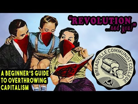 A Beginner's Guide to Overthrowing Capitalism