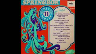 Springbok Hit Parade Vol.11 (1973) - Track B-05. And I Love You So, HQ