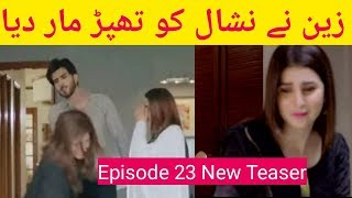 Koi Chand Rakh Episode 23 New Teaser Ary Digital Drama