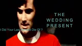The Wedding Present - What Did Your Last Servant Die Of....( Lyrics )