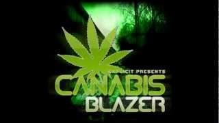 Explicit-Canabis Blazer