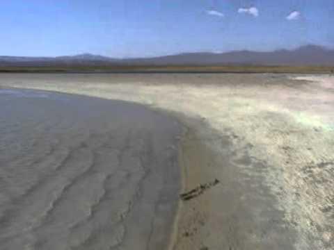 Viaje por Sudamerica di Giacomo Sanesi. San Pedro de Atacama (CIL). 01425 – laguna cejar 4
