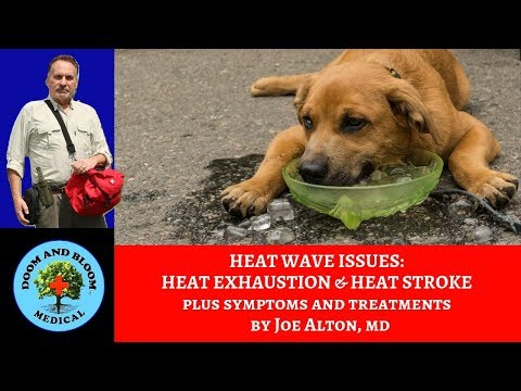 Sweating too much? Heat Exhaustion and Heat Stroke: Signs and Treatments