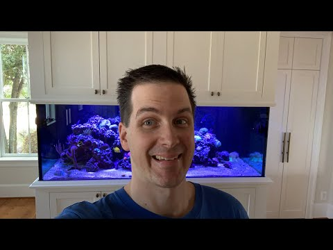 Live Walkthrough of a 400g VIP Reef Tank Build