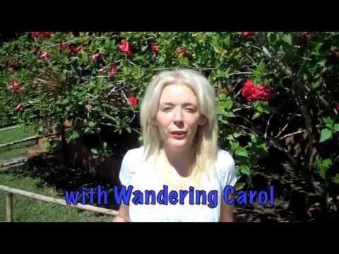 Nicaragua Adventure with Wandering Carol