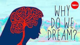 Why do we dream? - Amy Adkins width=