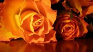 Memorias de Mi Vida (4) - Porque no fui tu amigo - Los Muecas - Poemas de Amor