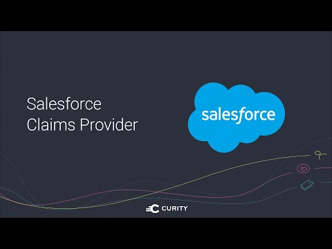 Salesforce Claims Provider