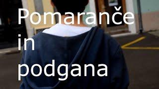 Pomaranče in podgana (short film)