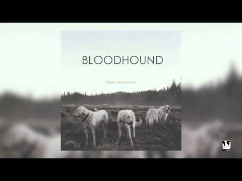 foxing-bloodhound-audio-triplecrownrecords