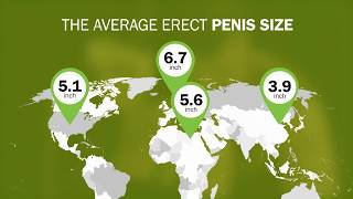 A larger penis in length and girth width=