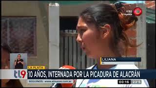 Niña de 10 años fue picada por un alacrán