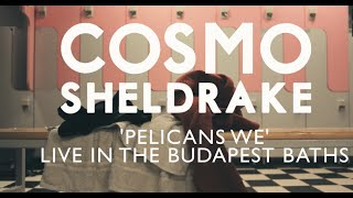 Cosmo Sheldrake - 'Pelicans We' Live in the Budapest Baths