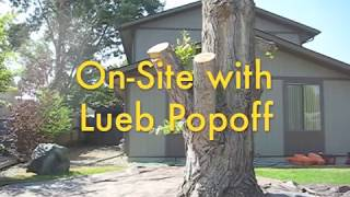 On Site with Lueb Popoff