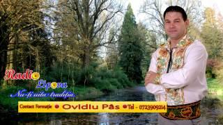 Ovidiu Pas - Învârtită Sibiu - Live