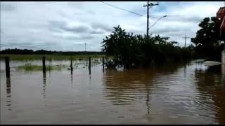 """Moradores da região da """"Balsa"""" estão ilhados com transbordo do Rio Mogi Guaçu."""