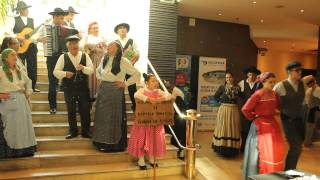 Traditional Portuguese music/dance at EU congress of Ichthyology