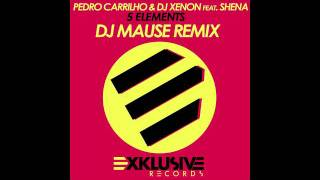 Pedro Carrilho & DJ Xenon feat  Shena   5 Elements Mause Remix