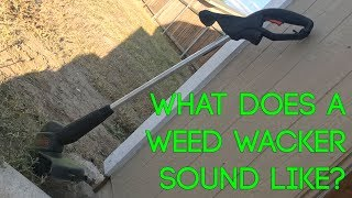 What Does A Weed Wacker Sound Like?