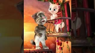 Talking cat funny video |Tera mujhse hai pehle ka Naata |How Boy Propose Girl |Jaane Tu ya Jaane Naa
