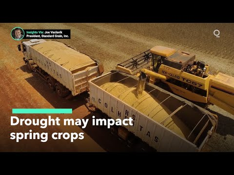 Drought Could Affect U.S. Spring Crops