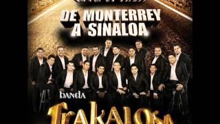 Un Par De Cerdos-Banda La Trakalosa De Monterrey  (De Monterrey A Sinalo)