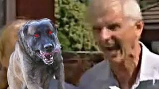Crazy Barking Man REMIX width=