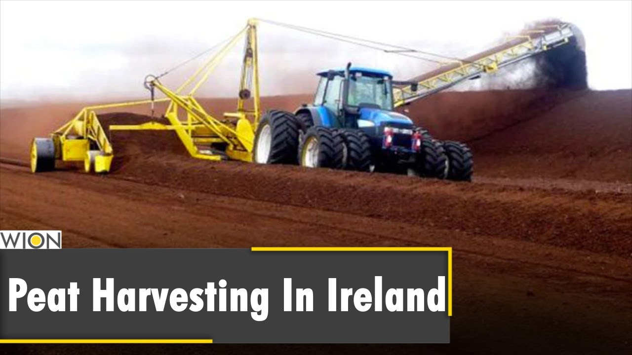 Why are Bogs important for Harvesting in Ireland?