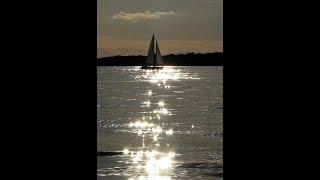Wild is the wind~ Nina Simone