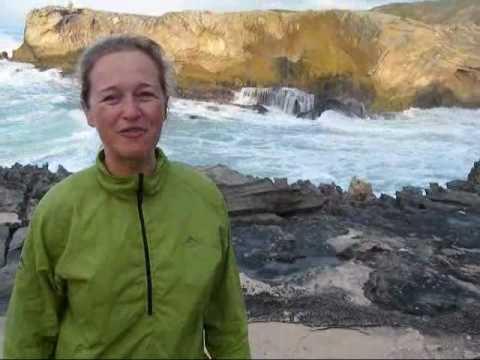 Whale Trail. De Hoop Nature Reserve