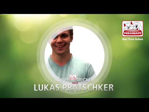 Geräuschtraining mit Lukas Pratschker
