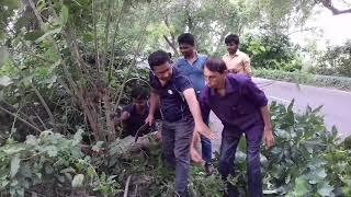 Dignagor road site jungle clean operation