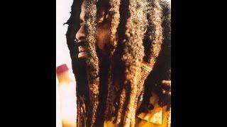 Bob Marley - Mr  Brown