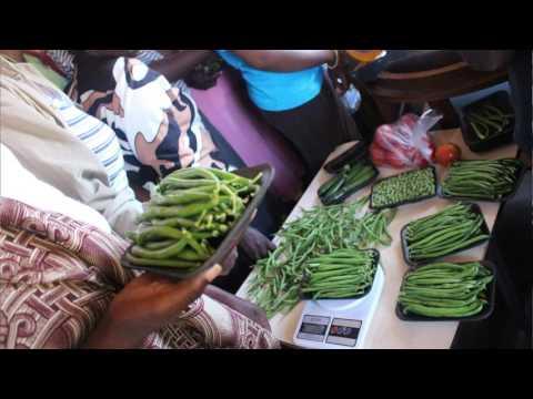 Farmer Market School in Zimbabwe