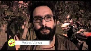 Pedro Afonso apoia Manuel Alegre
