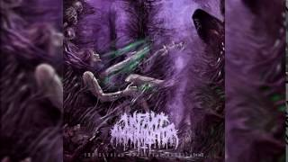 Infant Annihilator - Neonatalimpalionecrophiliation (Instrumental/Outro) *NEW 2016*