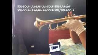 Salvame  Dread Mar I (Trompeta lesson)
