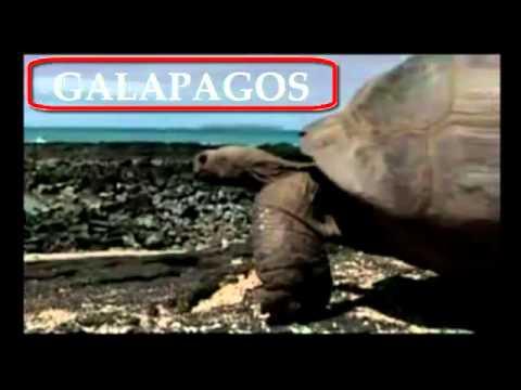 Regiones turisticas del Ecuador – Lo Mejor de Ecuador