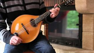 Irish mandolin lessons. The musical priest (Irish reel)