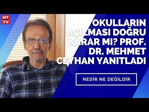 Okulların açılması doğru karar mı? Prof. Dr. Mehmet Ceyhan yanıtladı