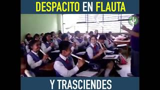 Flauta Despacito