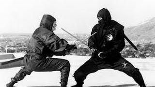Green Ninja vs Grey Ninja