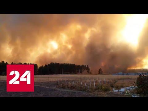Воронежская область ввела режим чрезвычайной ситуации