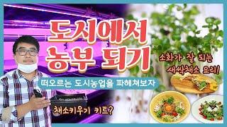 [경남타임즈] 난 도시에 살지만 채소를 키울 수 있지☆ 새싹채소 요리까지 만들어보자! 다시보기