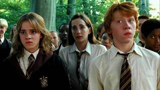 """Amar pelos dois"" Salvador Sobral | Harry Potter"