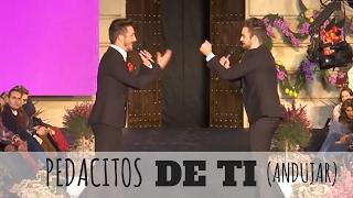 Pedacitos de ti - Antonio Orozco | Jonas y Alvaro (cover)