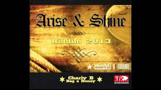 Charly B | Bag A Money | Arise & Shine Riddim 2013 [Weedy G Soundforce]