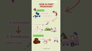 How is port produced? (animation)