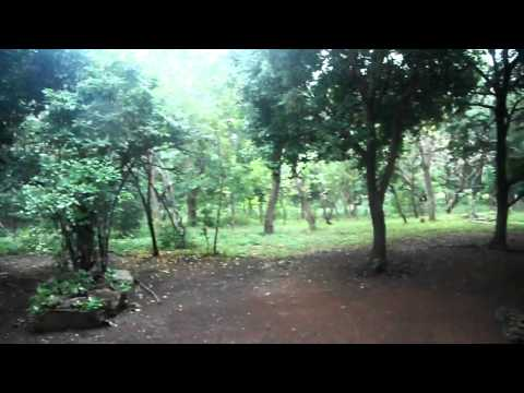 2011 Nicaragua Christmas